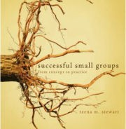 Successful Small Groups – From Concept to Practice